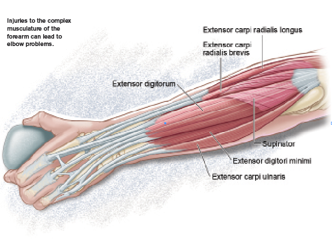 Elbow Pain And Cortisone Use Rock And Ice