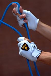 pmi-gloves.jpg