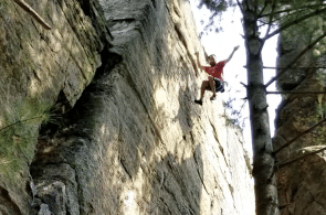Weekend Whipper: