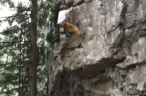 Weekend Whipper: Friends Don't Let Friends Take Backslappers