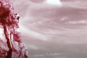 Solo: 1974 Oscar-Nominated Short Film
