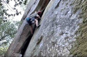 Weekend Whipper: Or, Rather, Weekend Ripper
