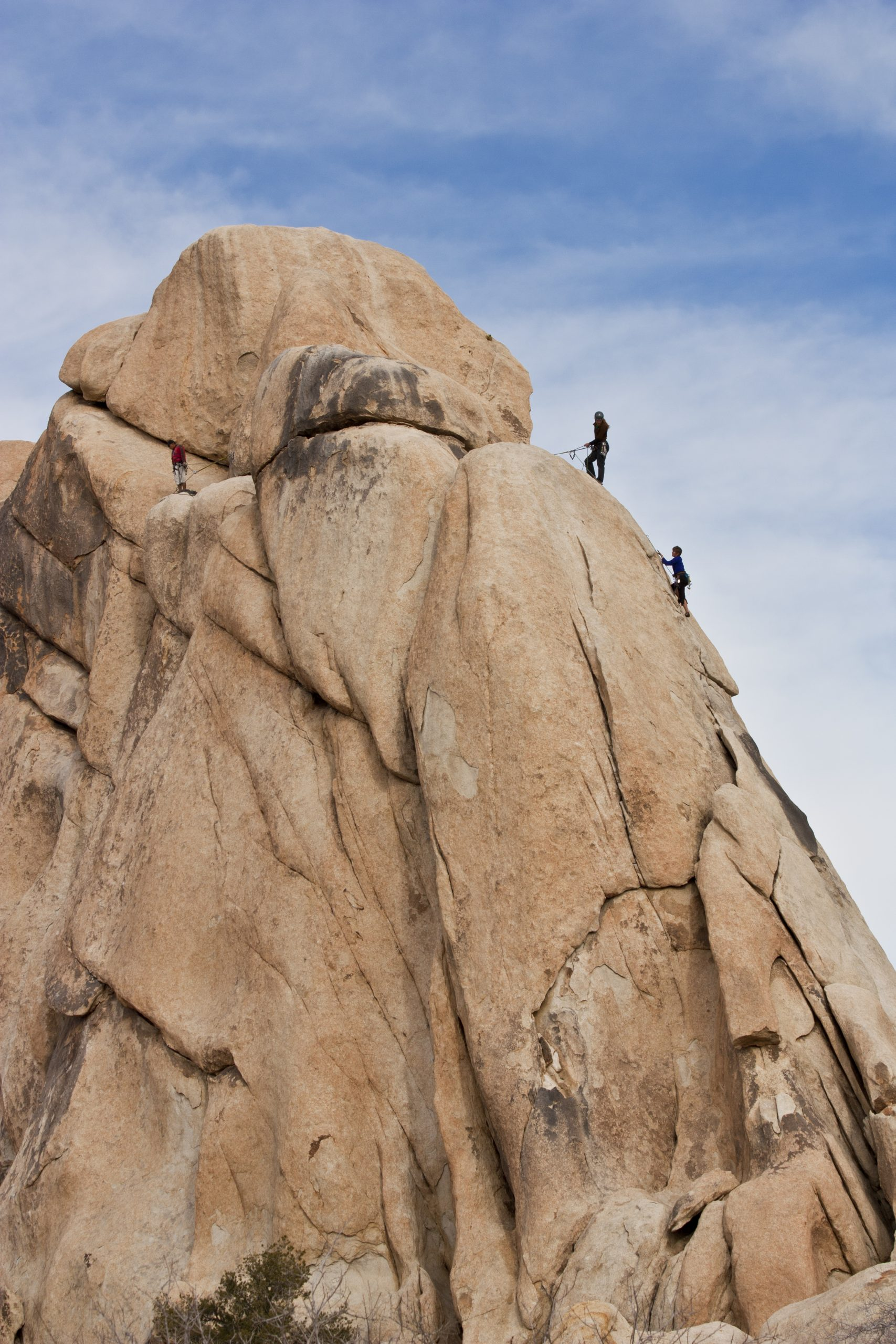 Climbers in Joshua Tree National Park.