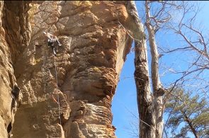 Weekend Whipper: Big Trad Fall on