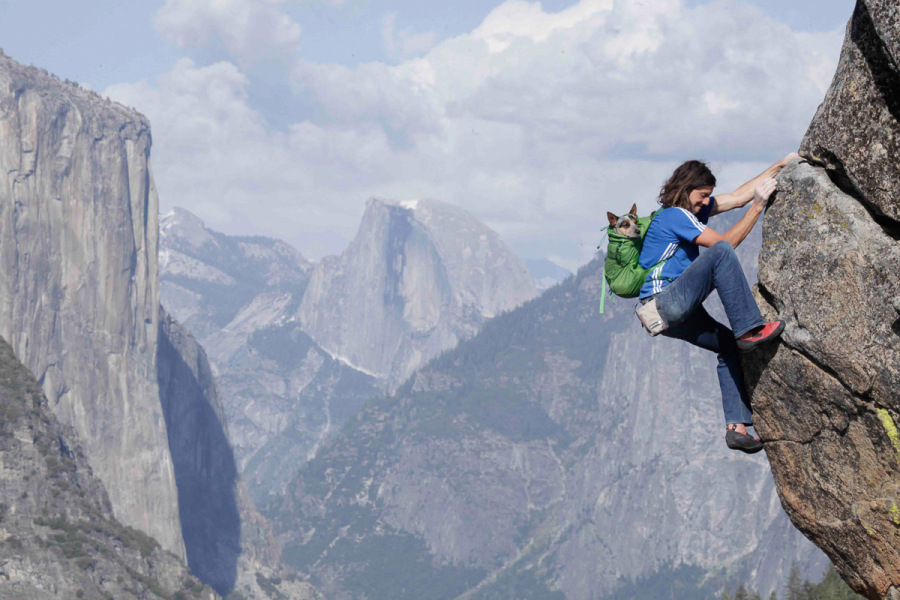 Dean Potter, and Whisper, free-soloing together in Yosemite. Photo courtesy of Dean Potter.