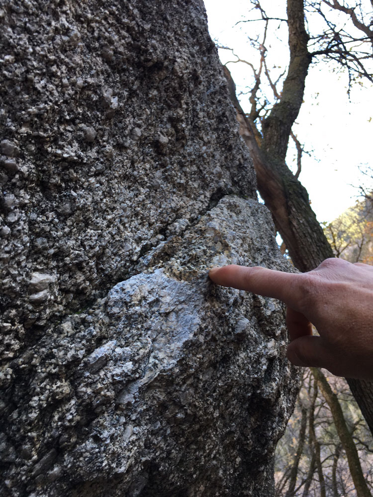 "Right handhold of <em>Barfly</em> (V8). Photo courtesy of Jimmy Keithley."" title=""Right handhold of <em>Barfly</em> (V8). Photo courtesy of Jimmy Keithley."" style=""float: left; margin: 0px 10px 10px 0px;""><img src="